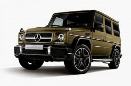 Aniversare în stil Mercedes