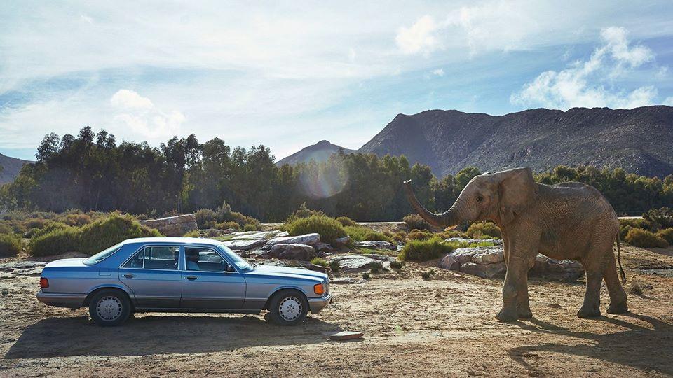 Mercedes-ul de safari