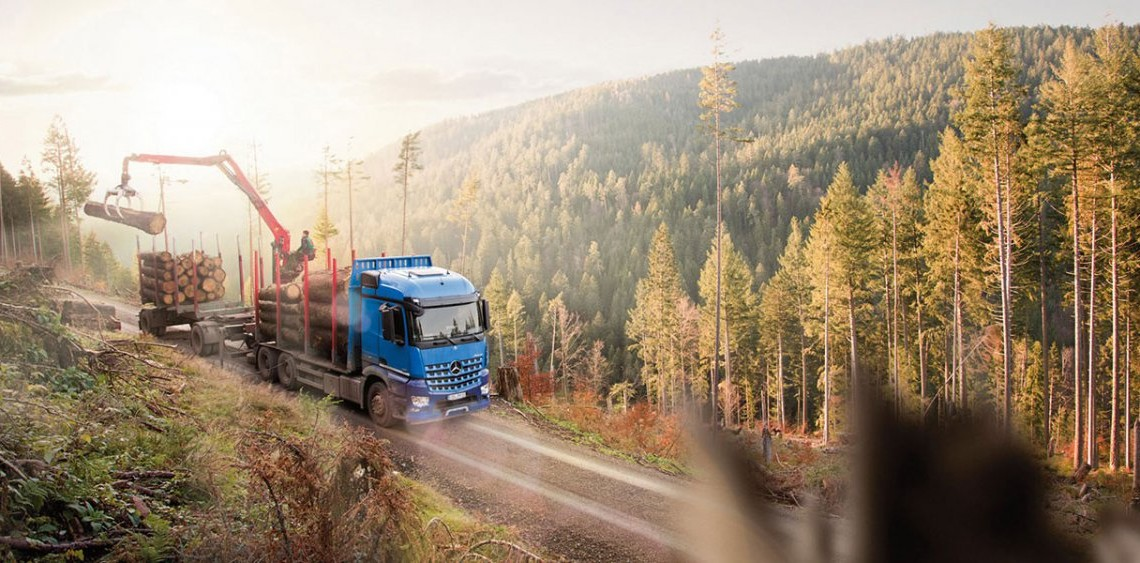 Mercedes-Benz Arocs: Demn de lemn