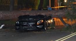 Un șofer supraviețuiește după ce un copac se prăbușește peste Mercedes-ul său