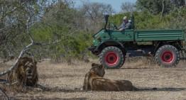 Safari cu un Mercedes-Benz Unimog