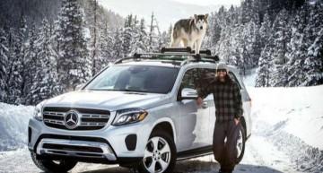 Explorînd munții cu un Mercedes-Benz GLS și un husky