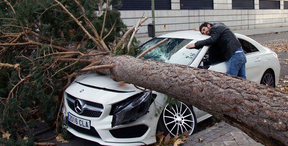 Strigător la cer! Un Mercedes strivit de copac în Spania