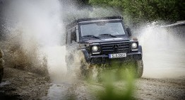Mercedes-Benz G-Class Proffesional: Off-roader pur