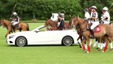 AMG Horses caii putere
