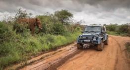 Safari de lux: Noul Mercedes-Maybach G 650 Landaulet se aventurează în junglă